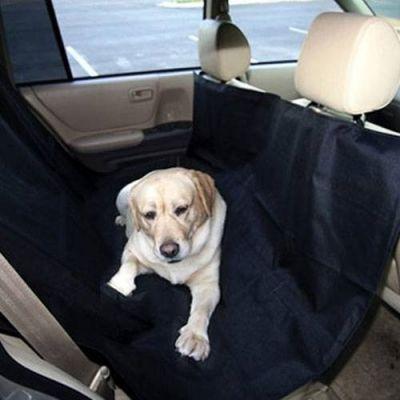 Protector de Estofos de Auto para Animais - AN580
